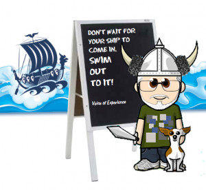 Direct Action Marketing-Viking